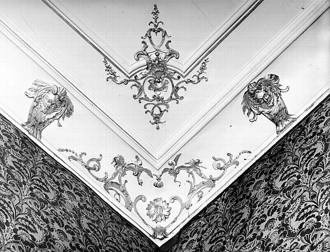 Petit salon : moulure d'angle de la corniche du plafond