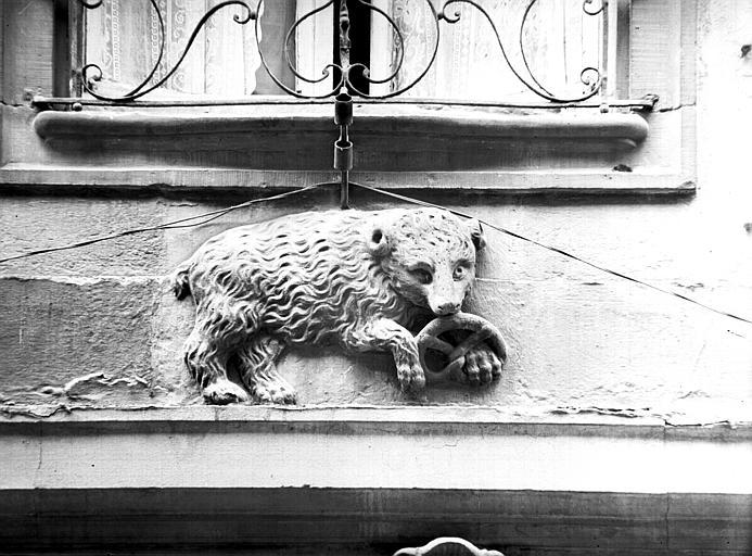 Enseigne : ours