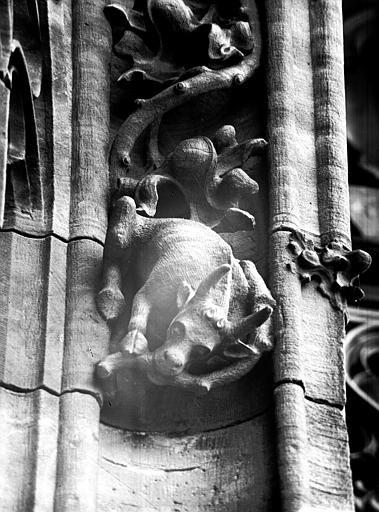 Façade, bras gauche du transept : détail