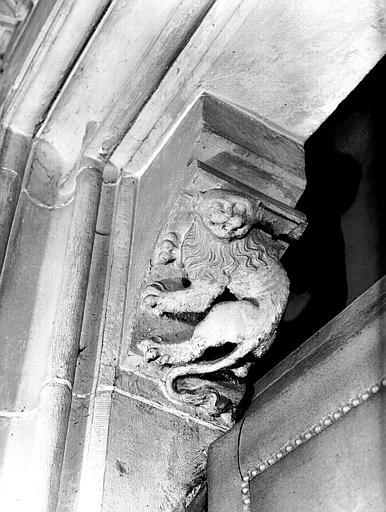 Corbeau : figure de lion