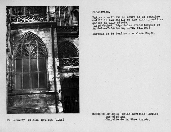 Fenestrage du bas-côté sud, chapelle de la cinquième travée