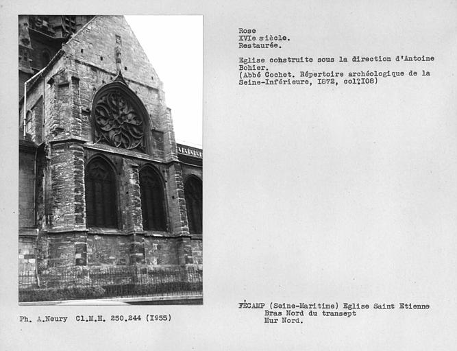 Rose du bras nord du transept, restaurée