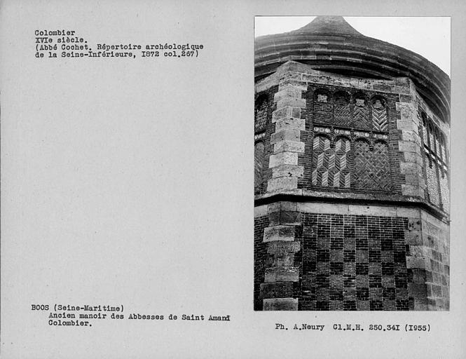 Appareil en briques et pierres du colombier