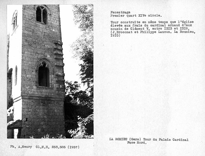 Fenestrage nord de la tour du Cardinal d'Aux