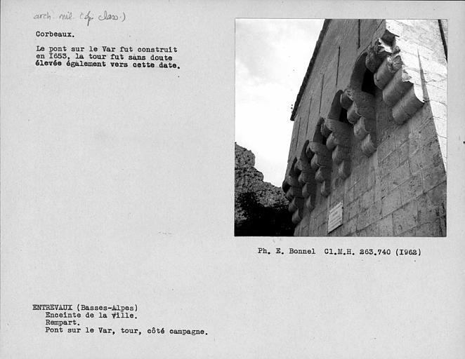 Corbeaux de la tour du pont sur le Var