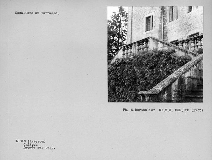 Escalier en terrasse du jardin