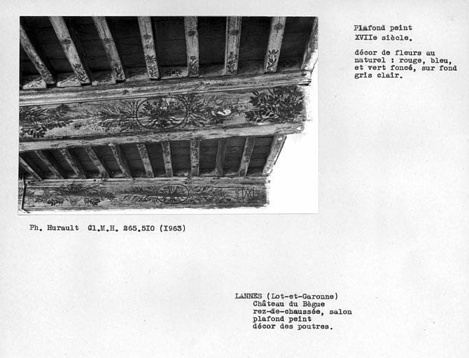 Décoration des poutres du plafond peint du salon