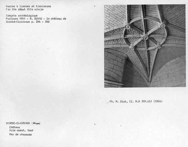 Tour de l'aile du 15e siècleme, plafond de la pièce au rez-de-chaussée, voûte à liernes et tiercerons