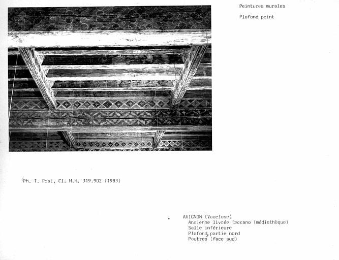Plafond peint de la salle inférieure, face sud des trois dernières poutres vers le nord