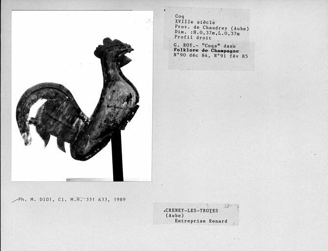 Profil droit du coq