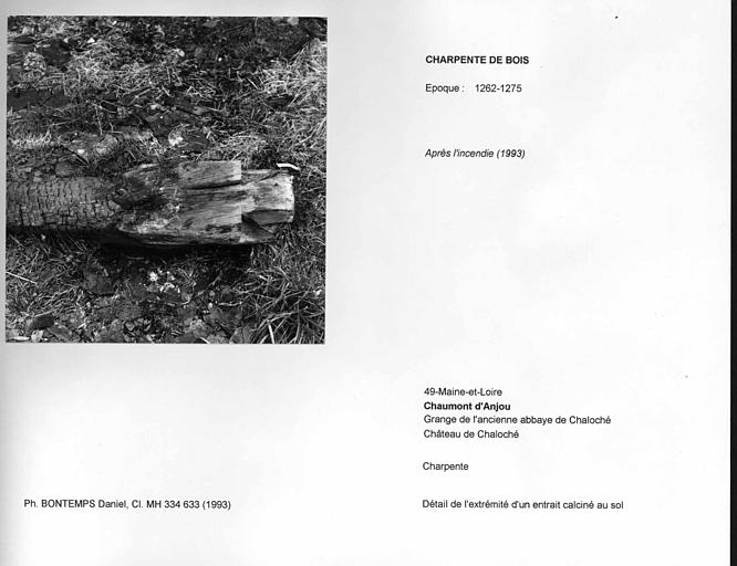 Charpente de la grange après l'incendie de 1993. Détail de l'extrémité d'un entrait calciné au sol