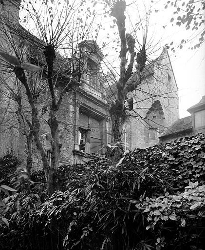 Haut de la façade vue de la cour adjacente, lierre