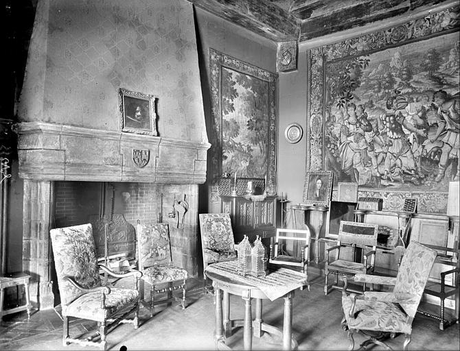 Aile sud-est : vue intérieure d'une salle avec cheminée