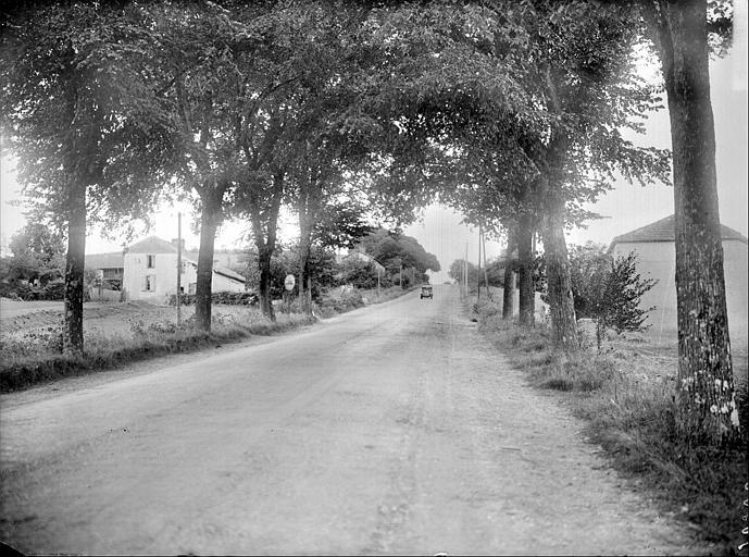 Site des Puntous : route d'accès
