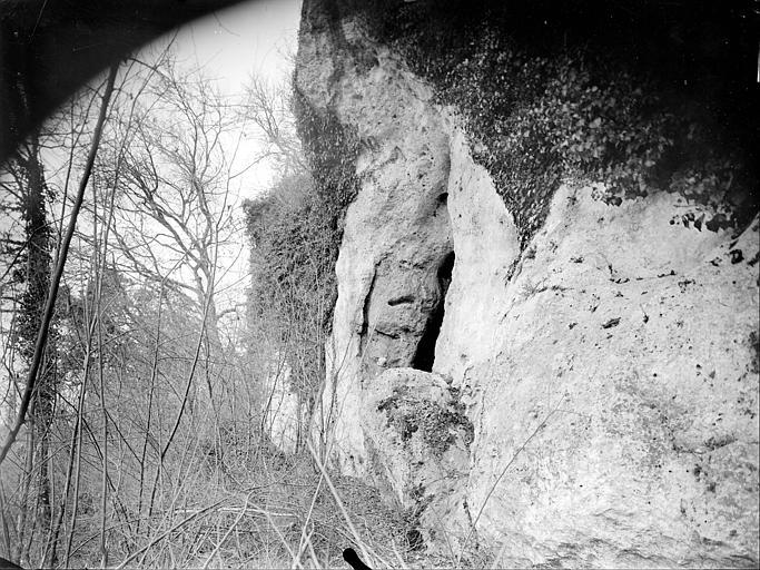 Grottes des Cottes : Abri du Têtard