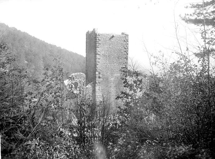 Ruines du château de Hagueneck