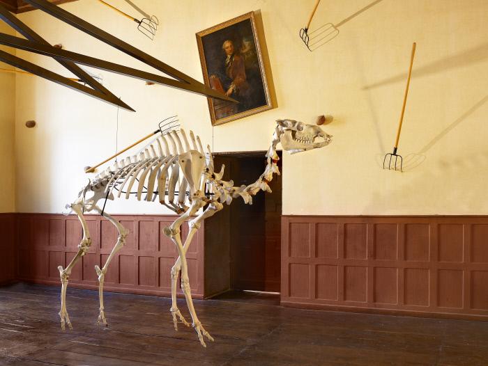 Squelettes, poteau : Quel est l'imbécile qui a quitté le monde des Lumières sans éteindre l'interrupteur, oeuvre en 3 éléments