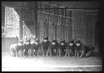 Groupe des souris
