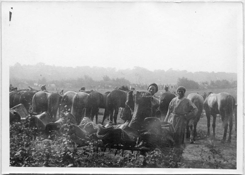 Cantonnement de Spahis, pansage des chevaux