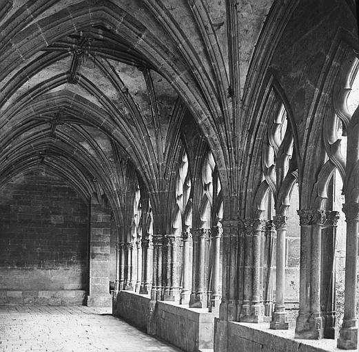 Eglise Saint-Gengoult et son cloître