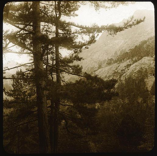 Sentier de Vizzavona à Ghisoni sur les pentes du Monte d'Oro