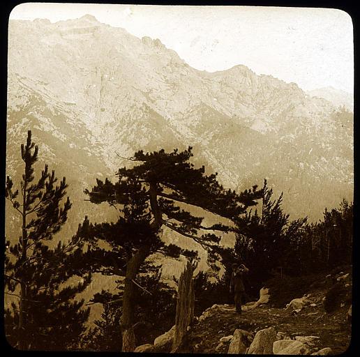 Sentier de Ghisoni, le Monte d'Oro et, en arrière, le Monte Rotondo