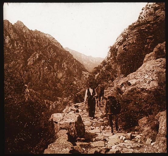 Homme menant deux ânes sur le sentier pierreux longeant la Spelunca