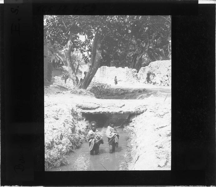 Deux enfants se baignant dans l'oasis du vieux Biskra