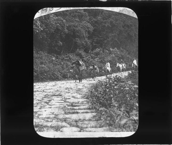 Voyageurs et autochtones avec chevaux sur une route pavée