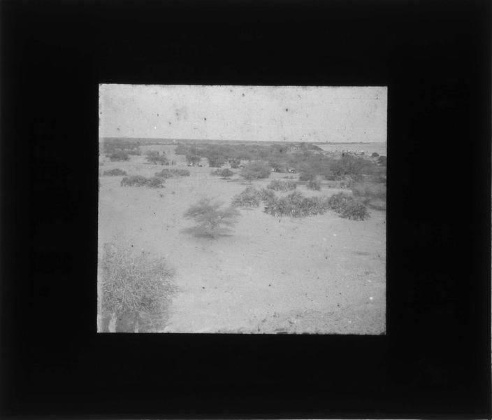 Brousse et fleuve Niger avec bateau à vapeur 'Mage' au loin