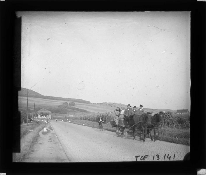Calèche et cycliste sur une route