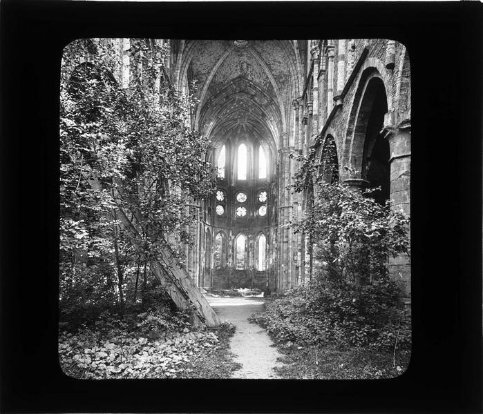 Eglise abbatiale, intérieur : nef vers le choeur en ruines envahi par la végétation