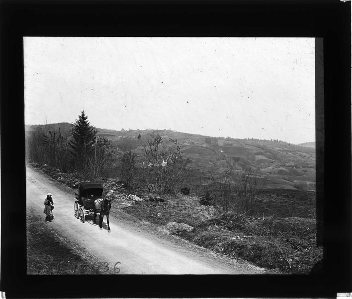 Panorama et calèche sur une route au premier plan