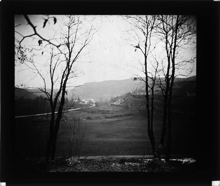 Bois de Chaumont depuis la vallée
