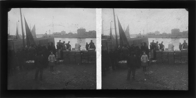 Déchargement d'un sardinier sur le quai de la Quarantaine, vue animée
