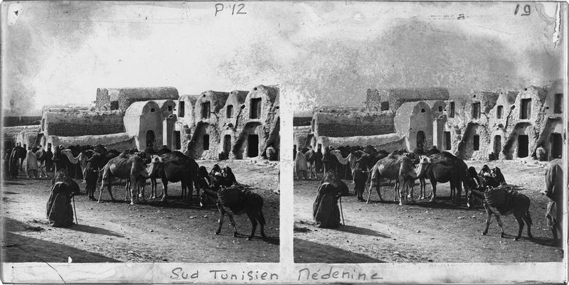 Façades sur rue animée avec chameaux