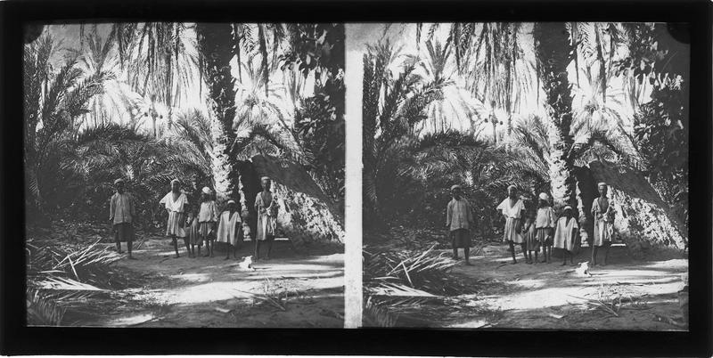 Groupe d'autochtones dans une palmeraie