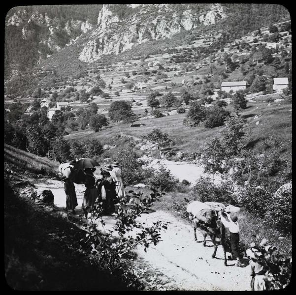 Route de montagne avec voyageurs et mulets