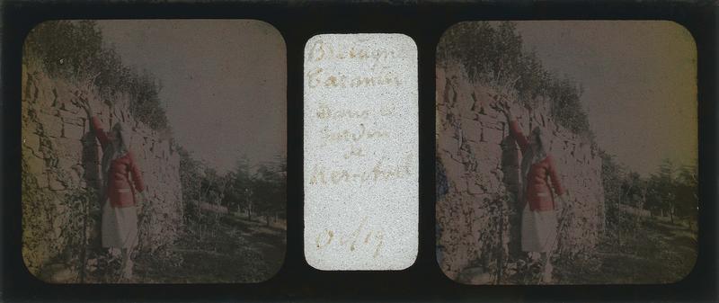Femme, main tendue vers le haut d'un muret en pierre, dans un jardin