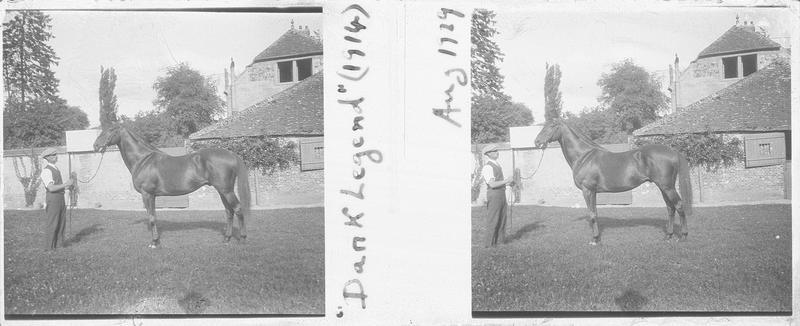Dark Legend (1914), cheval de course d'origine anglaise à la robe baie-brune vu de profil et homme pré d'une maison. Pedigree : Dark Ronald (1905) et Golden Legend (1907)