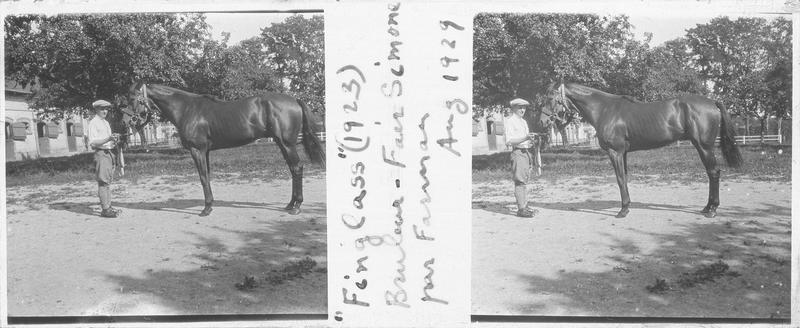 Finglas (1923), cheval de course d'origine française à la robe baie vu de profil et homme près d'une écurie. Pedigree : Bruleur (1910) et Fair Simone (1917)