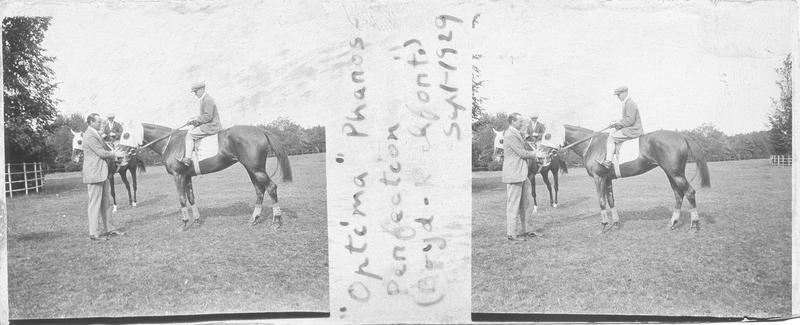Optima (1927), cheval de course d'origine anglaise à robe alezan vu de profil et Sir Cecil Boyd-Rochfort dans un pré. Pedigree : Pharos (1920) et Perfection (1918)