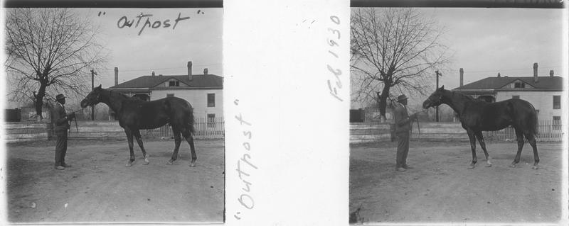 Outpost, cheval de course vu de profil et homme devant une maison