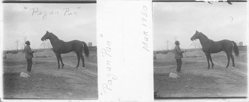 Pagan Pan (1918), cheval de course d'origine américaine à robe noire vu de profil et homme sur un chemin. Pedigree : Luke McLuke (1911) et Black Brocade (1912)