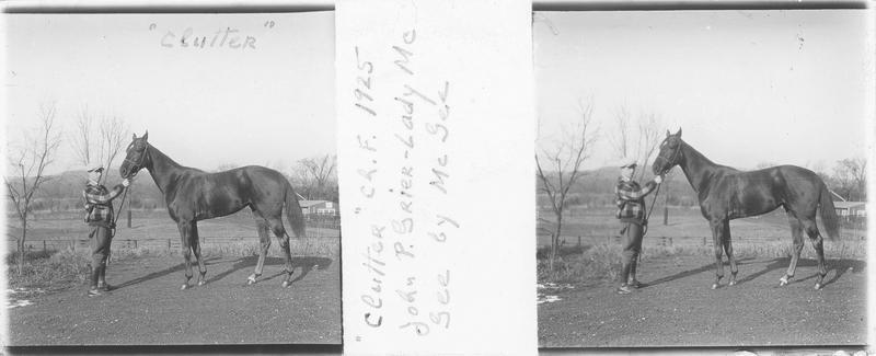 Clutter (1925), cheval de course vu de profil et homme sur un chemin. Pedigree : John P. Grier (1917) et Lady McGee (1909)