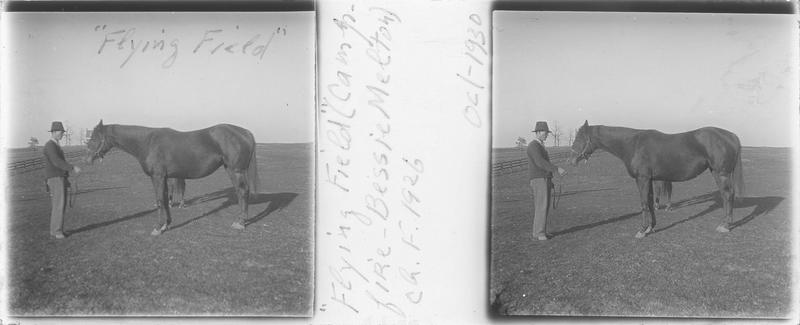 Flying Field (1926), cheval de course d'origine américaine à robe alezan vu de profil et homme dans un pré. Pedigree : Campfire (1914) et Bessie Melton (1911)