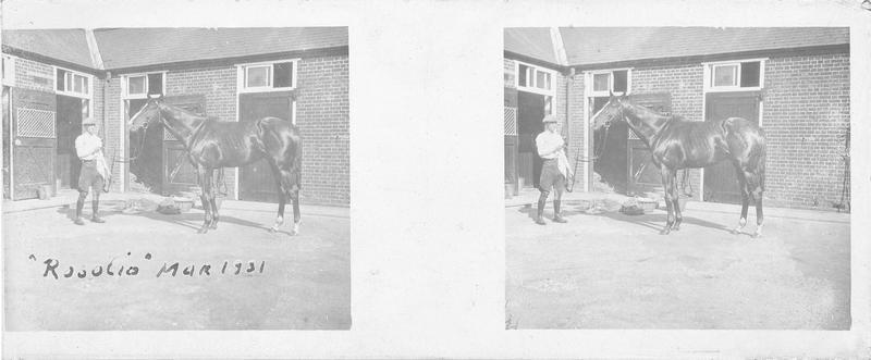 Rosolio (1926), cheval de course d'origine française à robe alezan vu de profil et homme devant une écurie. Pedigree : Massine (1920) et Roselys (1911)