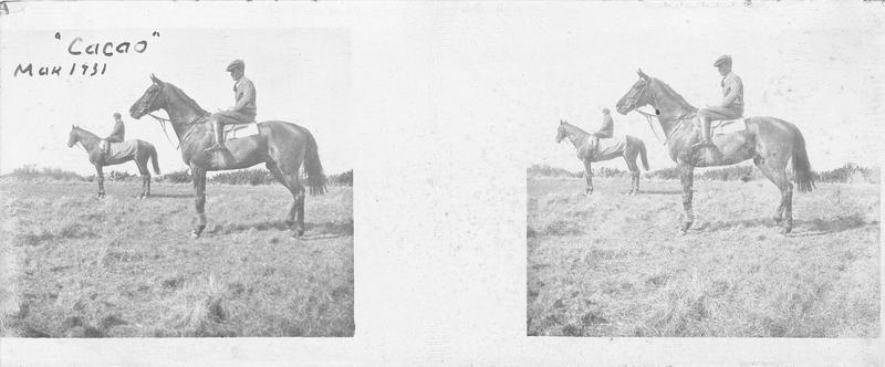 Deux chevaux, dont Cacao, montés par des cavaliers dans un pré