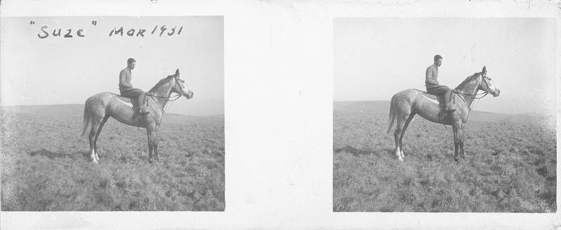 Suze (1928), cheval de course d'origine française à robe grise vu de profil et cavalier dans un pré. Pedigree : Filibert de Savoie (1920) et Sagina (1913)