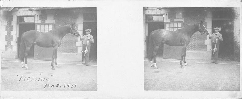 Massine (1920), cheval de course d'origine française à la robe baie et homme devant une écurie. Pedigree : Consols (1908) et Mauri (1909)
